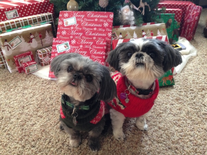 THEY LOVE FAKE CHRISTMAS.